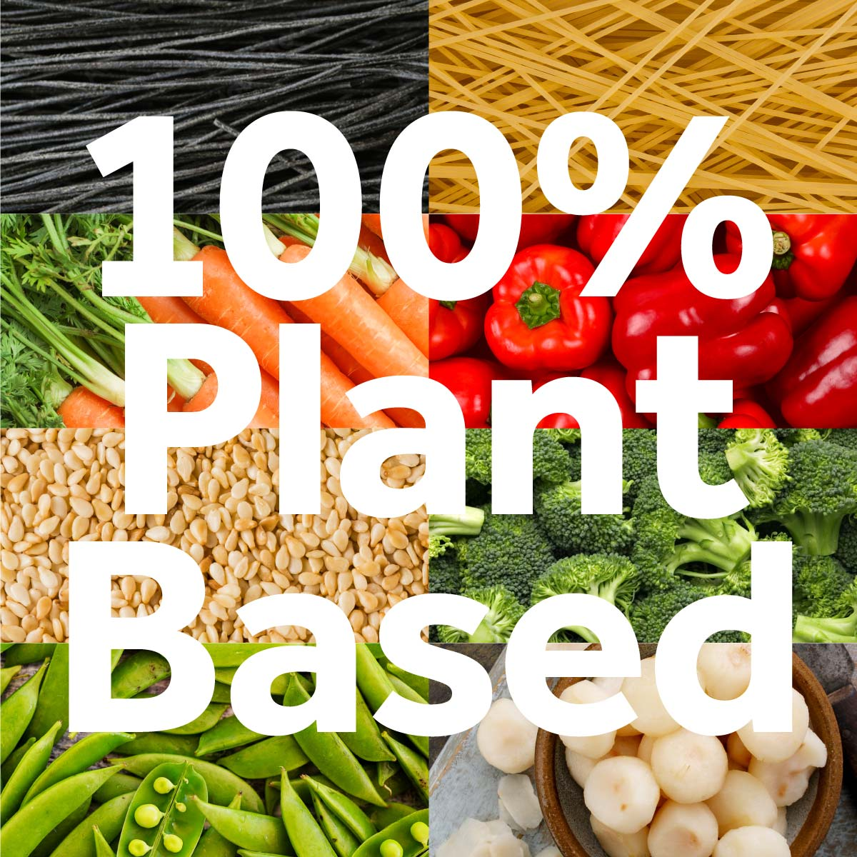 100% Plant Based Asian Style Noodle Bowl